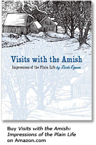 Buy Visits with The Amish on Amazon Market