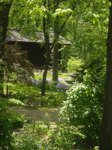 Our family home and wild flower gardens my parents created in Naperville, Illinois.