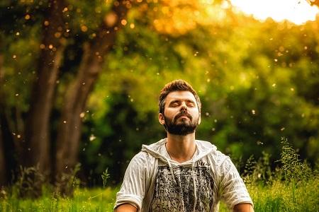 Maharishi Ayurveda and Transcendental Meditation
